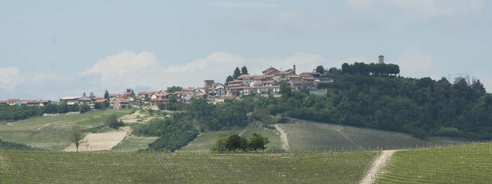 Barolo wine tour: A cellar full of wine