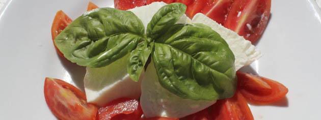 Caprese salad recipe (2)